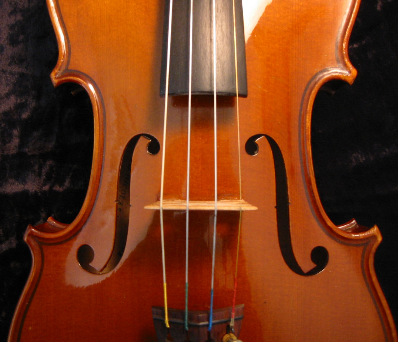 http://www.yardedge.net/wp-content/uploads/2008/11/violin.jpg