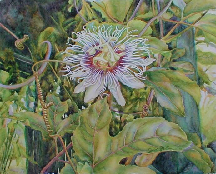 Tiara Passion by Juliet Thorburn