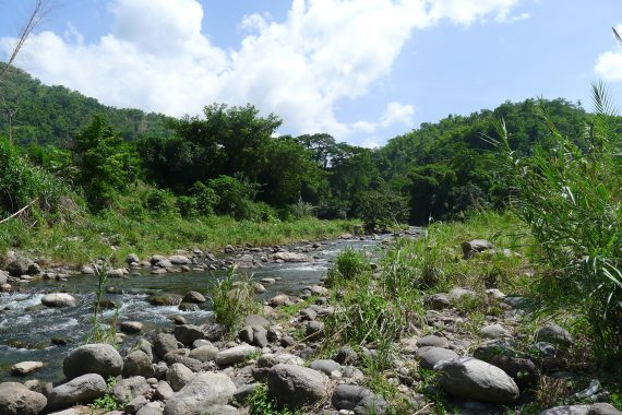 Wag Water River, St. Mary Jamaica