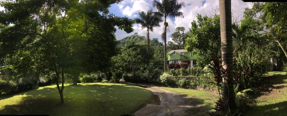 Belcour Lodge, St. Andrew