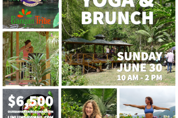 Yoga & Brunch at Belcour